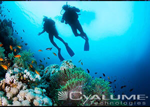 6in-SnapLight-lightstick-diving